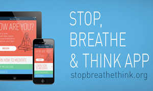 Stop Breathe Think checks in with lawyers before session